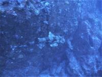 #上昇傾向の神子元島4航海 ニザダイ大玉は見ごたえあります![8]