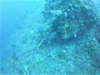 今日の神子元島 #気持ち良い下げ潮からのドリフト[4]