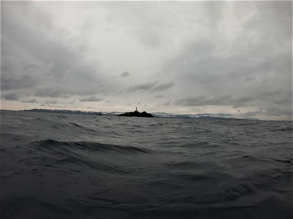 今日の神子元島3ダイブ #冬空の神子元島
