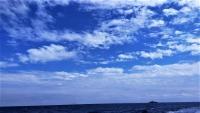 今日の神子元島4航海 #黒潮頑張れ![1]
