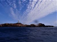 今日の神子元島2ダイブ #北東強風でポイント限定[1]