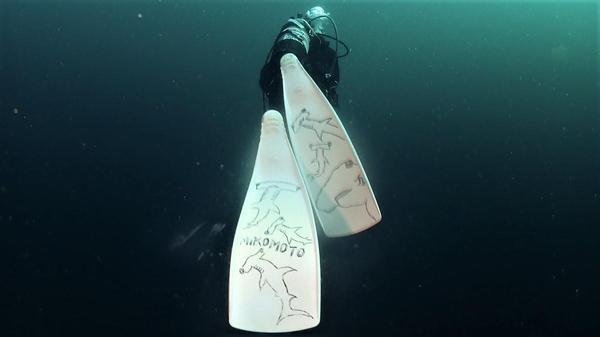 今日の神子元島 強い上げ潮からのスーパードリフトダイブ!