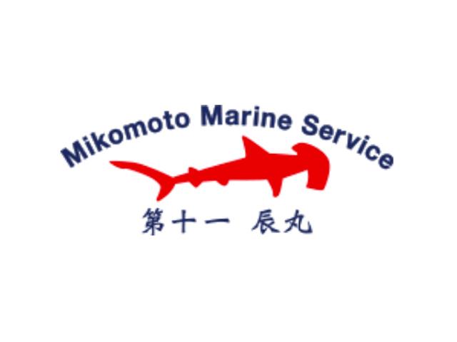 今日の神子元島 #ハンマー群れ、カマストガリザメ群れ、メジロザメ群れ